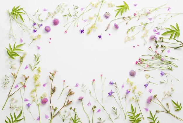 Flores do verão na parede do livro branco