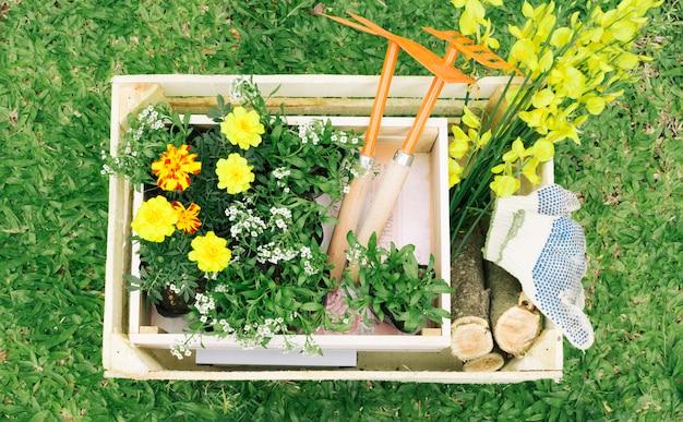 Flores e equipamentos de jardim em caixa de madeira
