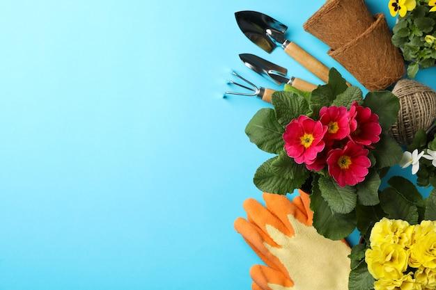 Flores e ferramentas de jardinagem em azul, espaço para texto