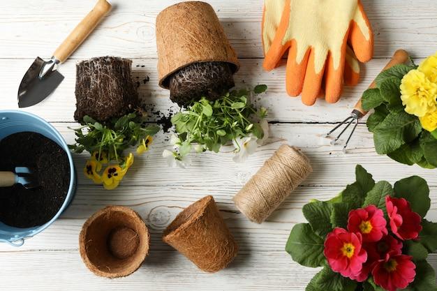 Flores e ferramentas de jardinagem na mesa de madeira, vista superior