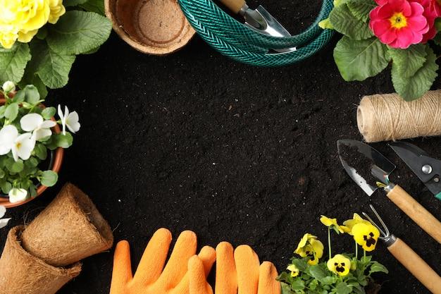 Flores e ferramentas de jardinagem no solo, espaço para texto