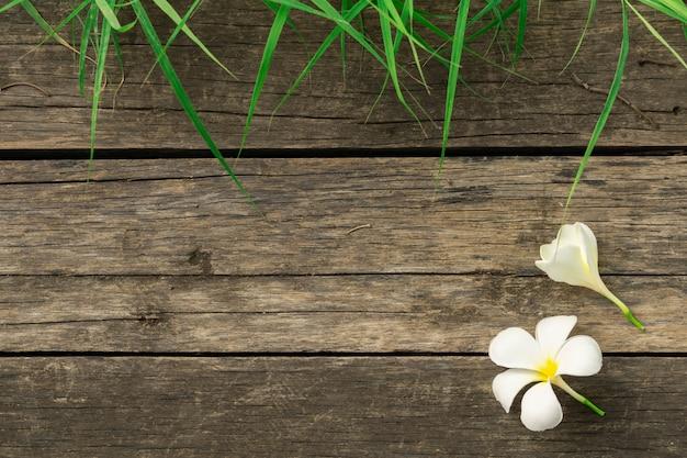 Flores e grama brancas do plumeria no fundo de madeira. quadro do conceito de natureza.