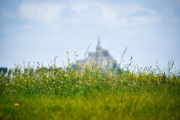 Flores em primeiro plano com silhueta desfocada do mont saint michel