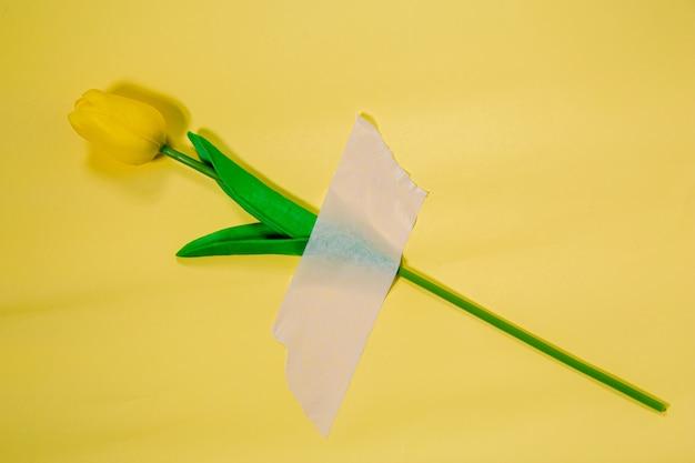 Flores em um amarelo