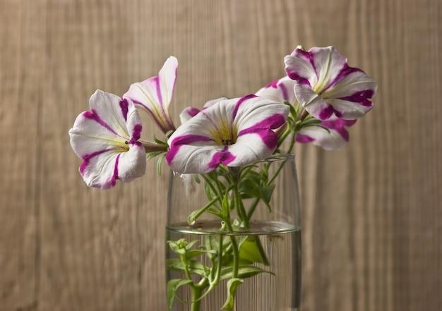 Flores em um copo