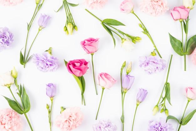Flores espalhadas em cores diferentes