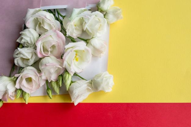 Flores eustoma com envelope em fundo colorido. envelope aberto com arranjos de flores brancas. conceito de saudação festiva. composição fresca e brilhante.