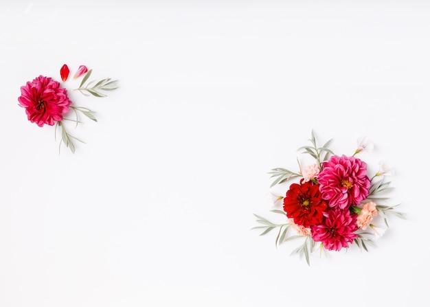 Flores festivas de begônia vermelha, composição de hortênsia branca em fundo branco. vista superior aérea, configuração plana. copie o espaço. conceito de aniversário, mãe, dia dos namorados, mulher, dia do casamento