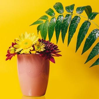Flores gerbera amarela e rosa em um copo rosa em um fundo amarelo com um grande galho verde com folhas