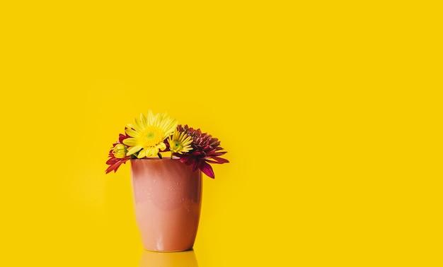 Flores gerbera amarela e rosa em um copo rosa sobre fundo amarelo