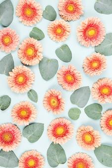Flores gerbera rosa e deixar padrão no fundo azul