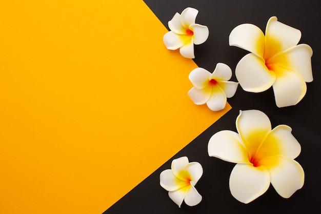 Flores havaianas em fundo preto e amarelo com lugar para texto