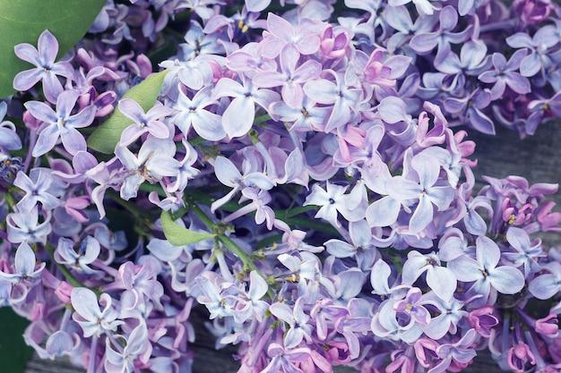 Flores lilás em fundo de madeira. lilac bonito no fundo de madeira.