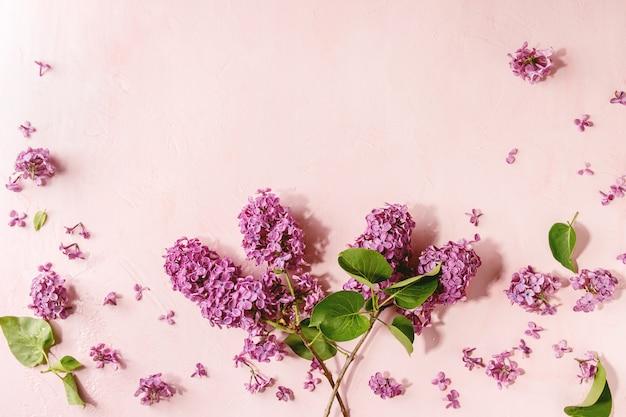 Flores lilás sobre rosa