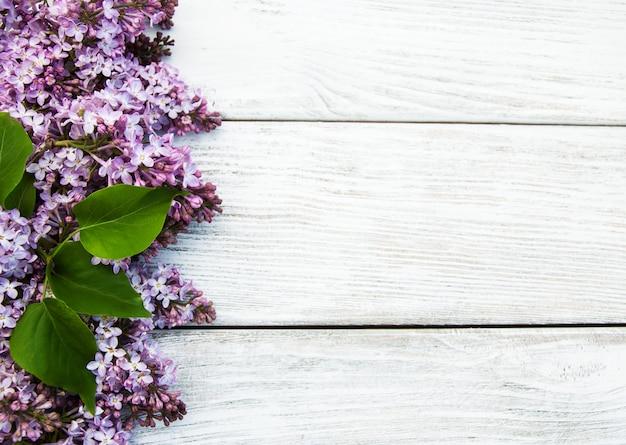 Flores lilás