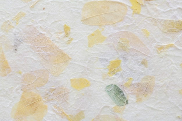 Flores listradas no fundo de textura de papel de amoreira