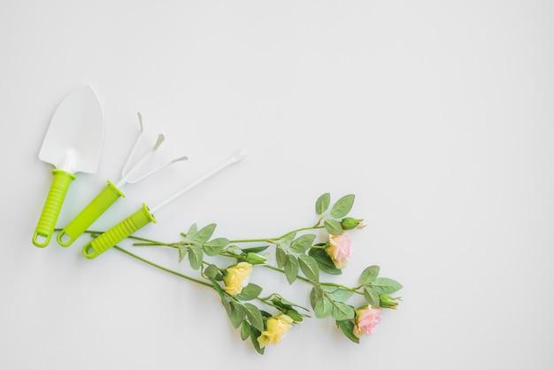 Flores, mentindo, perto, jardinagem, ferramentas