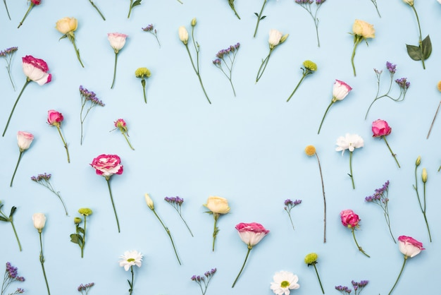 Flores multicoloridas dispostas flores sobre fundo azul