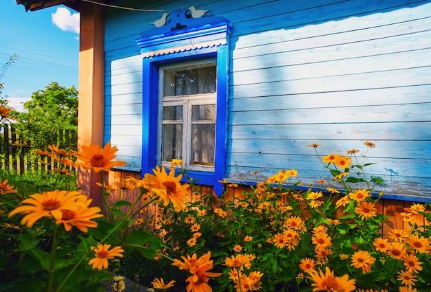 Flores na frente das janelas da casa velha. paisagem de verão.