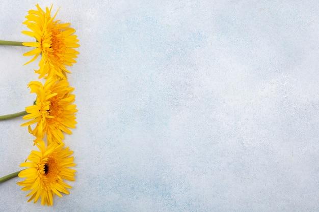 Flores no lado esquerdo e superfície branca