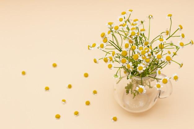 Flores pequenas de camomila em um vaso de vidro. conceito minimalista para a primavera