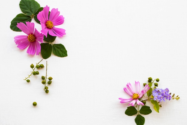 Flores rosa arranjo cosmos plano leigos estilo cartão postal