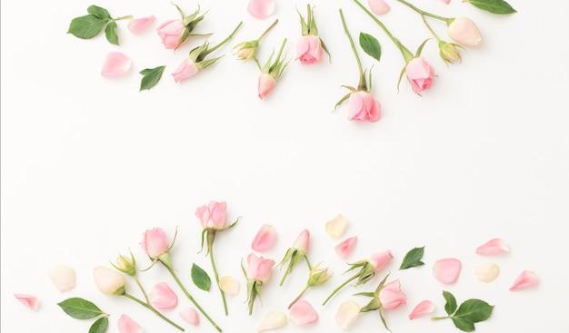 Flores rosa e brancas