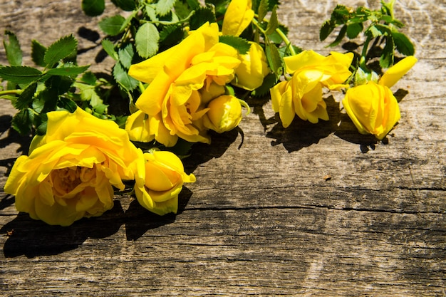 Flores rosas amarelas sobre fundo de madeira rústica com espaço de cópia. vista do topo