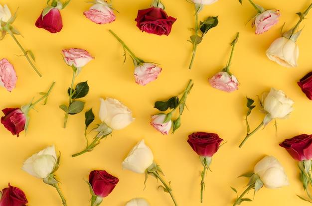 Flores rosas naturais em postura plana