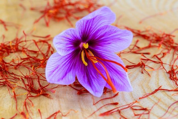 Flores roxas de açafrão e estames em fundo de madeira