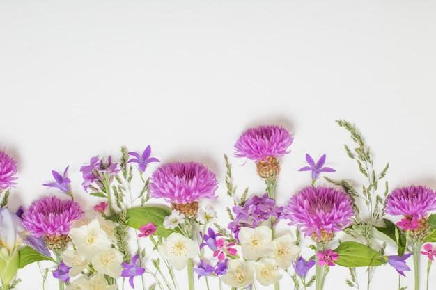 Flores roxas do verão na superfície branca