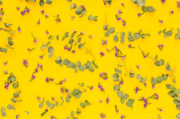 Flores roxas e galhos verdes sobre fundo amarelo