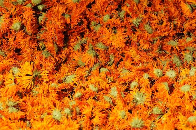 Flores secas de calêndula