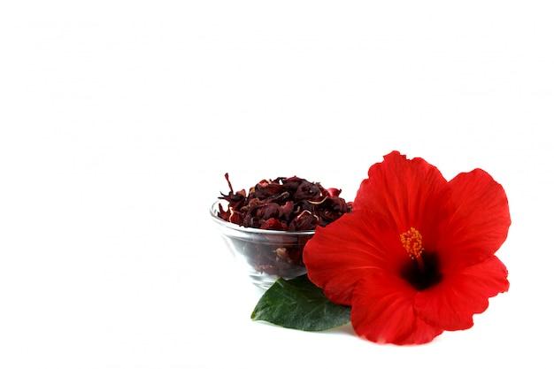 Flores secas de hibisco vermelho