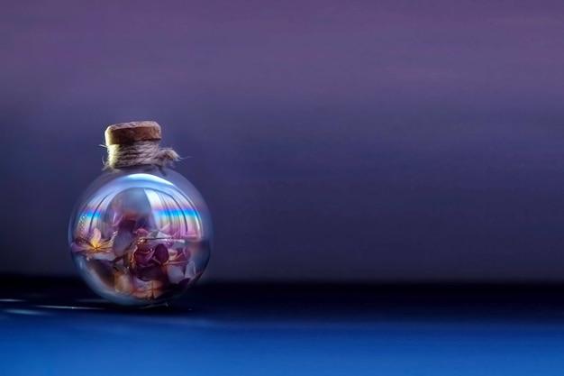 Flores secas dentro do bulbo de vidro no fundo roxo