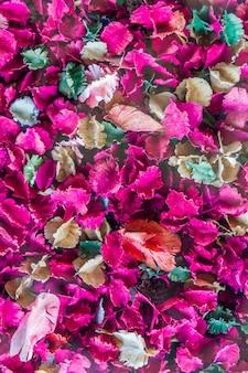 Flores secas e fundo de folha, rose