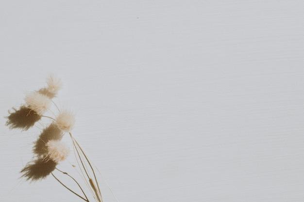 Flores secas em cinza poeirento Foto Premium