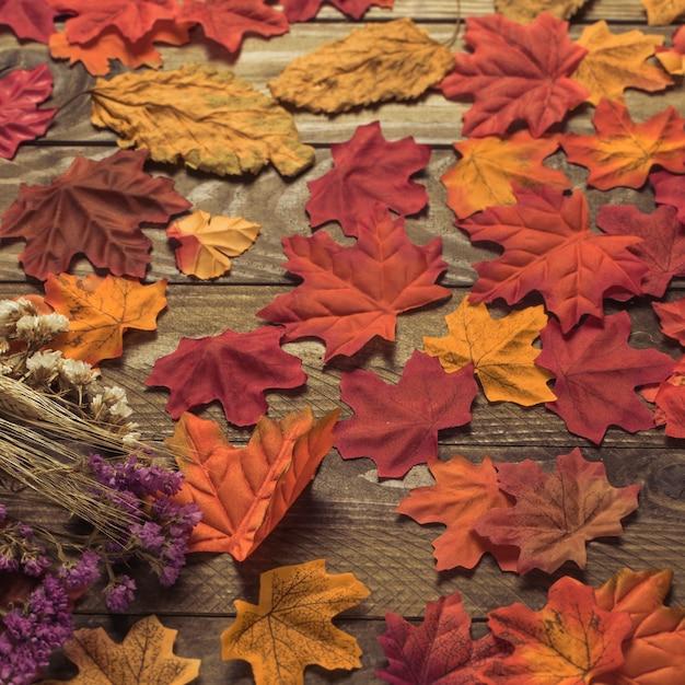 Flores secas em folhas
