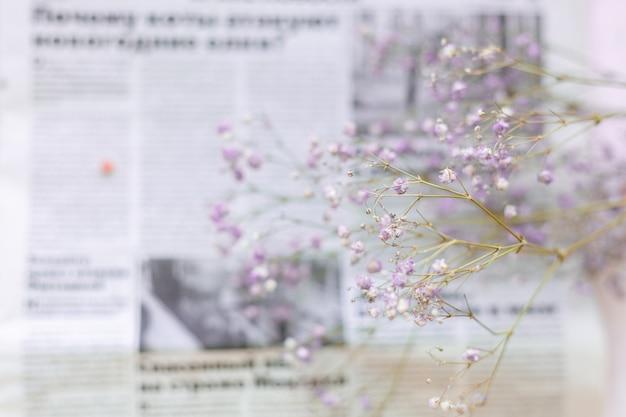 Flores secas na superfície do jornal, foco seletivo, clima de primavera
