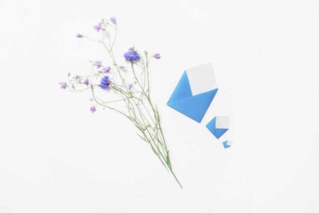 Flores silvestres. centáurea azul, envelopes pequenos mentem sobre fundo branco. três letras. escreva uma carta. cartão de felicitações copyspace, vista plana, vista superior.