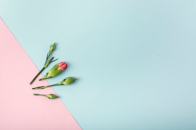 Flores simplistas e fundo com espaço de cópia