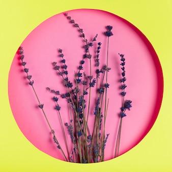 Flores sobre fundo rosa em moldura verde