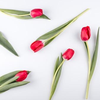 Flores tulipa vermelha na mesa branca
