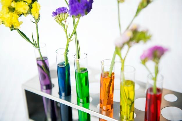 Flores, uma fileira, de, testubes, com, diferente, colorido, decoração água, e, ciência, experiência, conceito