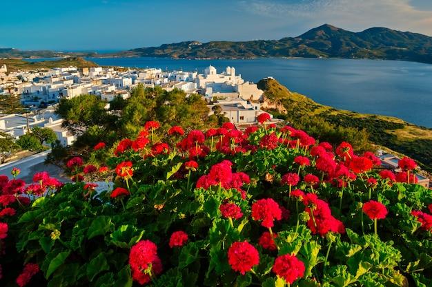 Flores vermelhas de gerânio com plaka da vila grega na ilha de milos, na grécia