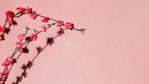 Flores vermelhas em um galho