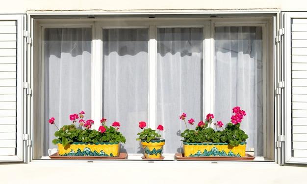 Flores vermelhas nas janelas brancas