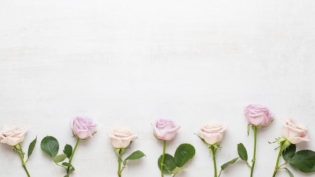 Floresce o cartão de dia dos namorados. moldura feita de rosa rosa em fundo cinza. camada plana, vista superior, espaço de cópia.