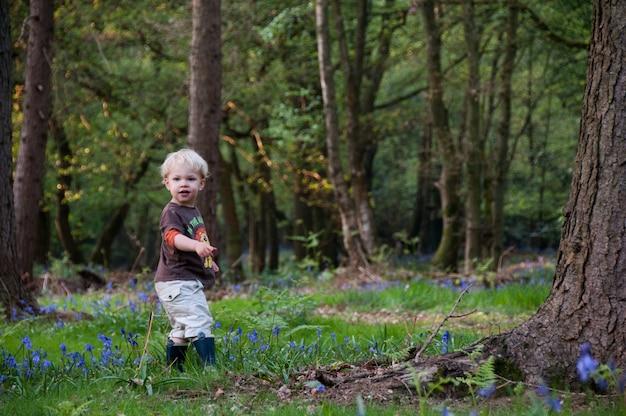 Floresta ao ar livre madeiras loira flor menino
