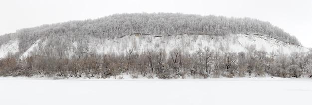 Floresta de inverno coberta de geada no meio da rússia.